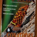 2010-06-23 Juni tijdschriften 063 kl