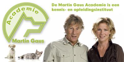 logo Gaus Academie
