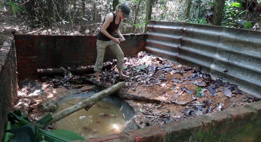 Een voormalig verblijf voor varkens is gerenoveerd met een vijver, bladeren en schuilplaatsen en wordt bewoond door moerasschildpadden van het geslacht Cyclemys. Foto: Thomas Ziegler
