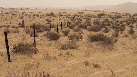 d. Het omheinde terrein in het Zaranik-gebied. (© Foto: Omar Attum en Basem Rabia Motwaly)